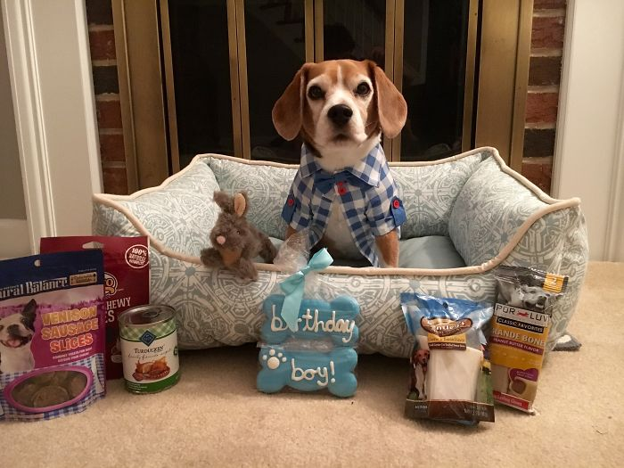 Duncan Celebrating His 10th Birthday With All His Presents..