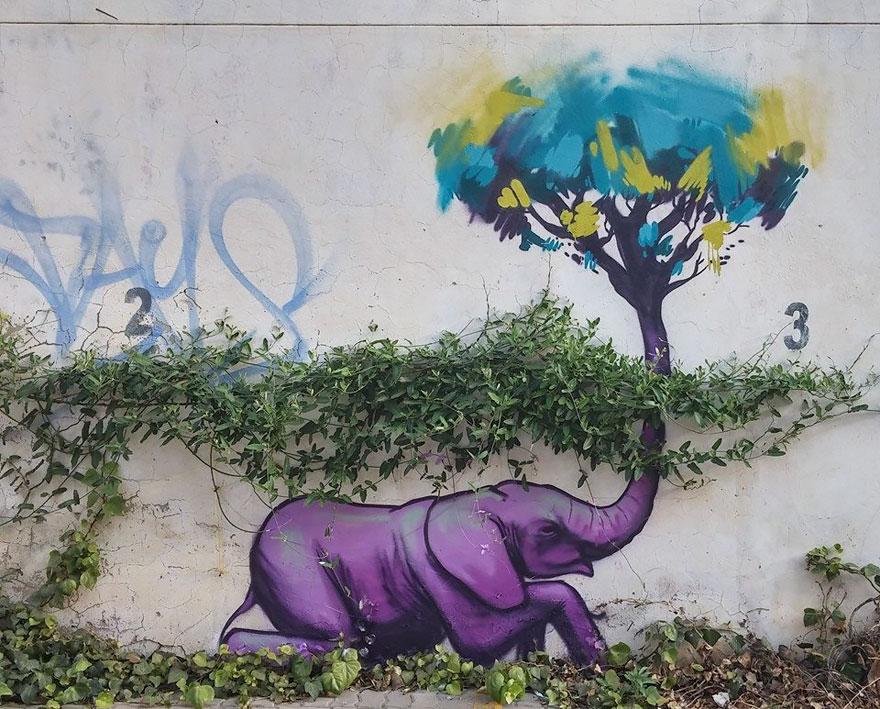 interactive-elephant-street-art-falco-one-south-africa-5