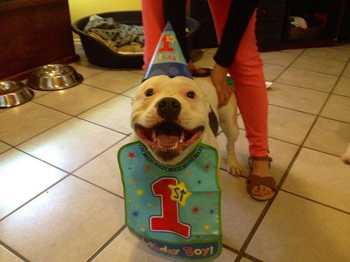 Our Birthday Boy