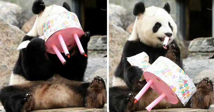 Funi Celebrating Her 4th Birthday