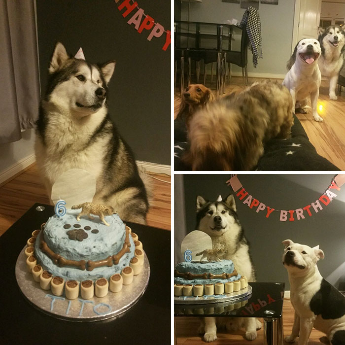That Time Of Year Again. My Boy Had Another Party For His 6th Birthday