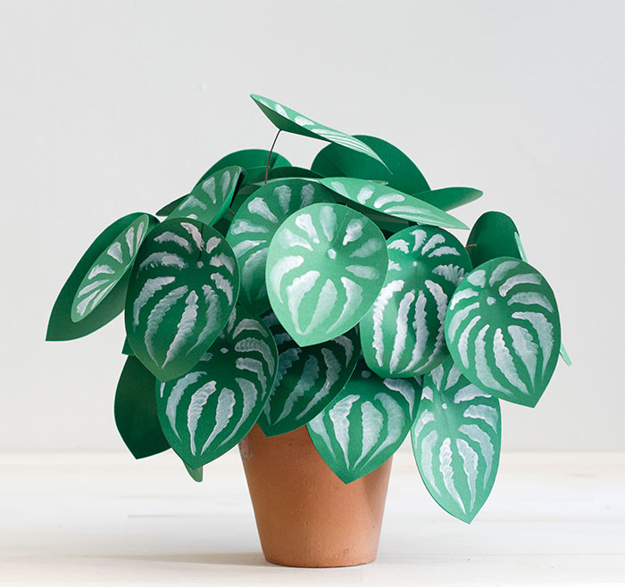 I Couldn't Grow Real Plants So I Made These Paper Ones