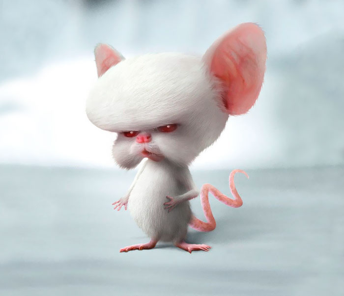 Brain From Pinky And The Brain