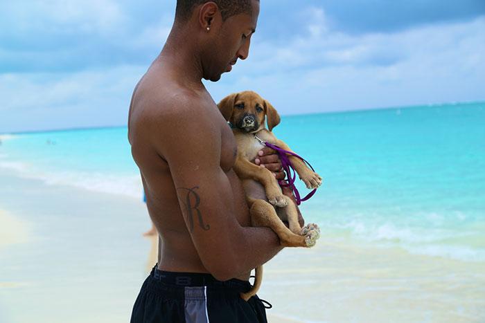 rescue-dog-island-potcake-place-turks-and-caicos-17