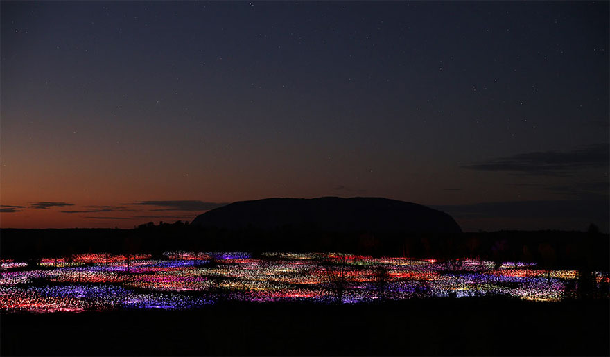 surreal-light-installations-field-of-light-bruce-munro-uluru-australia-1