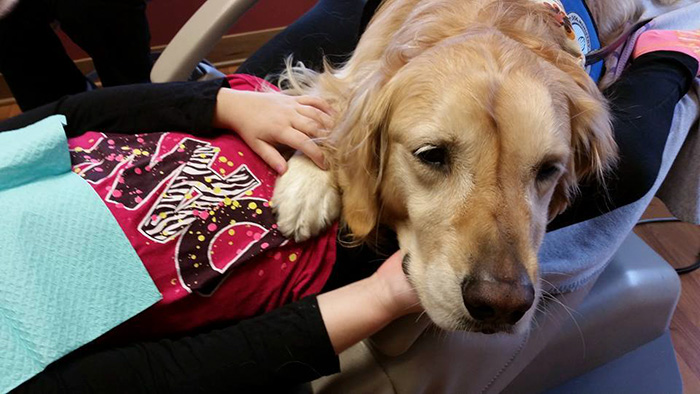 therapy-dog-dentist-stress-jojo-pediatric-dentistry-northbrook-10