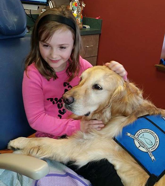therapy-dog-dentist-stress-jojo-pediatric-dentistry-northbrook-13