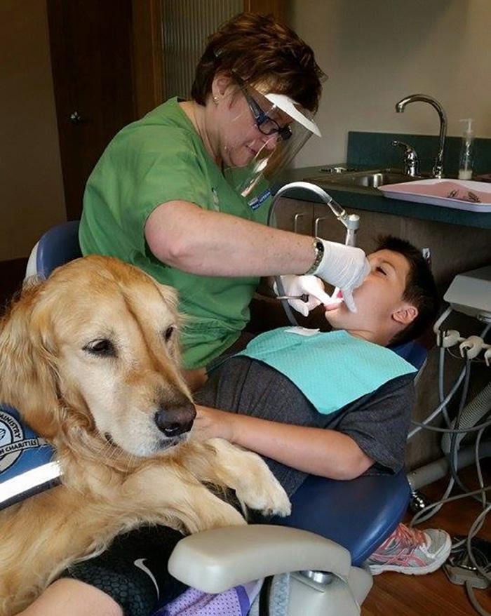 therapy-dog-dentist-stress-jojo-pediatric-dentistry-northbrook-14
