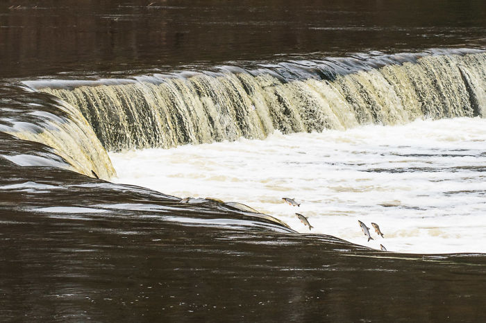 We Visited Kuldiga In Latvia And Explored The Widest Waterfall In Europe