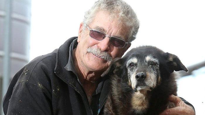 worlds-oldest-dog-dies-age-30-kelpie-maggie-12