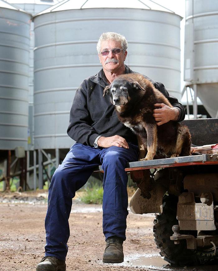 worlds-oldest-dog-dies-age-30-kelpie-maggie-15