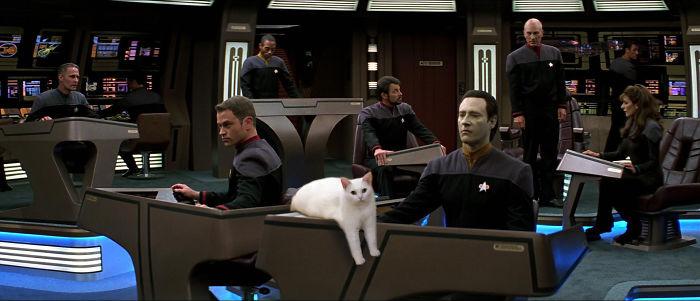 Deep Space Cattt