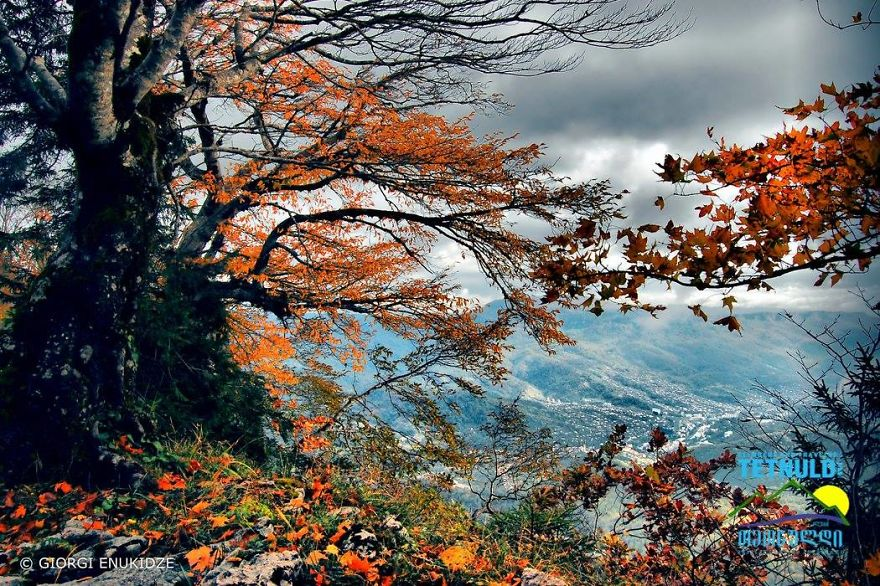 Autumn View From Tskrajvari. Location: Imereti, Georgia, 1569 Metres Above Sea Level
