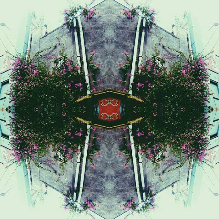 Patternise
