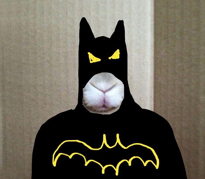 Batbunn