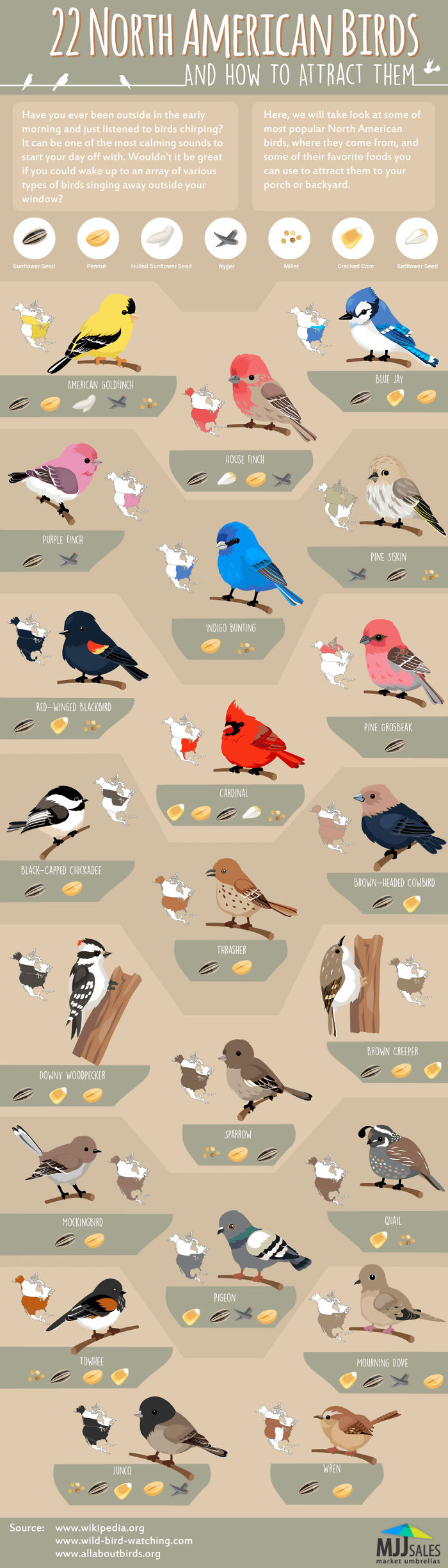 Found This Cool Chart Of North American Birds