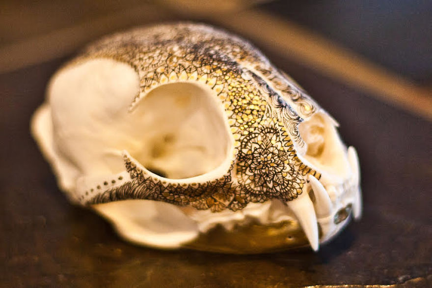 Dorable Longhorn Skull Wall Decoration Photo - Wall Art Collections ...