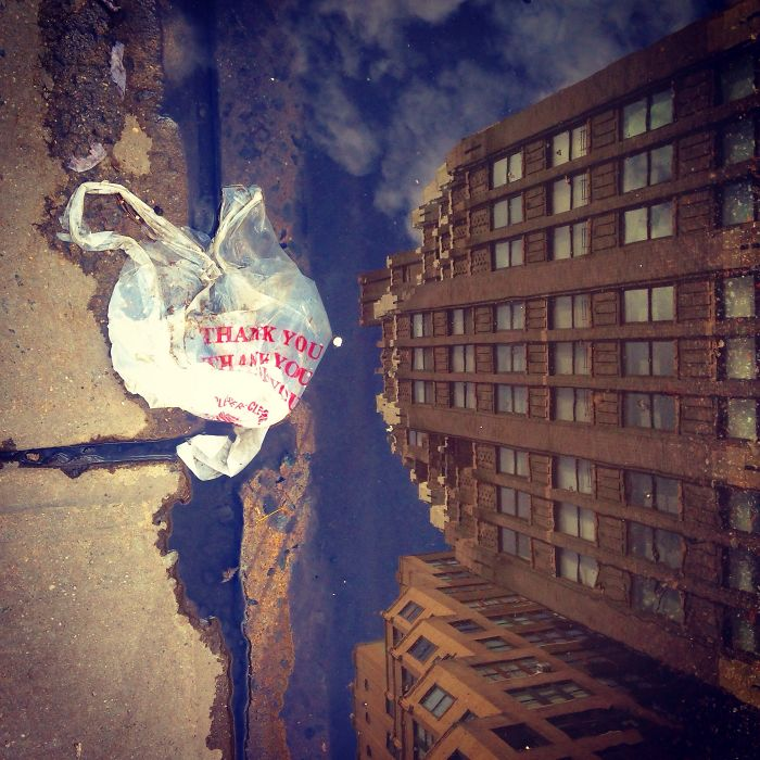 I Take Photos Of Plastic Bags In The Streets Of Nyc To Raise Awareness About Littering