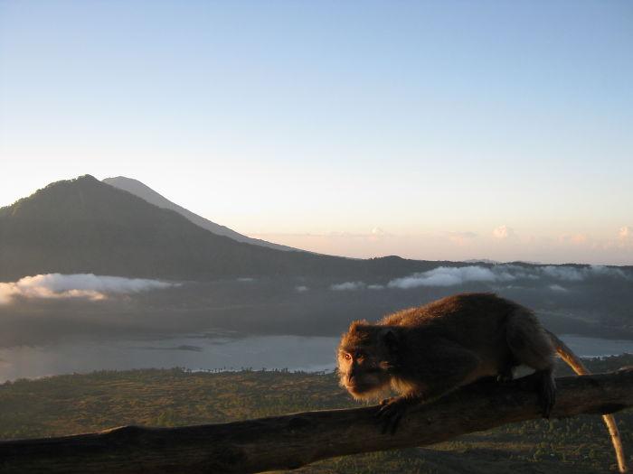Kintamani Volcano, Bali