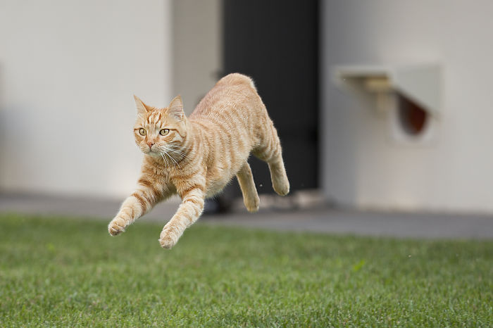 Look Mom I Can Fly! I'm Superricky!!!