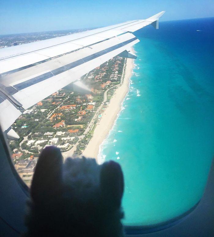 Hello Palm Beach!