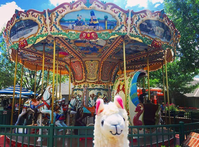 What About Carousels With Llamas Instead Of Horses?