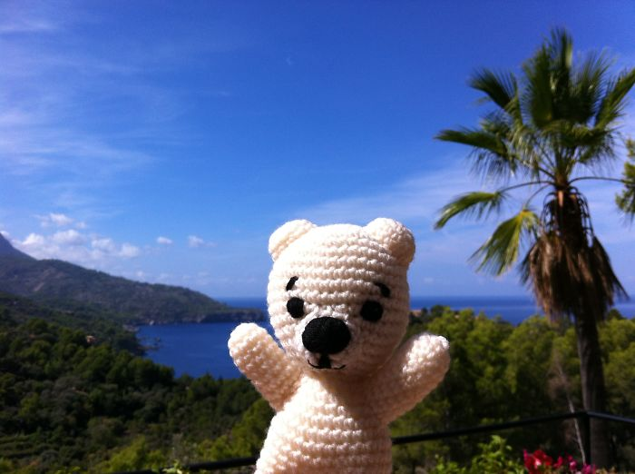 Teddy Travels The World To Tell Stories
