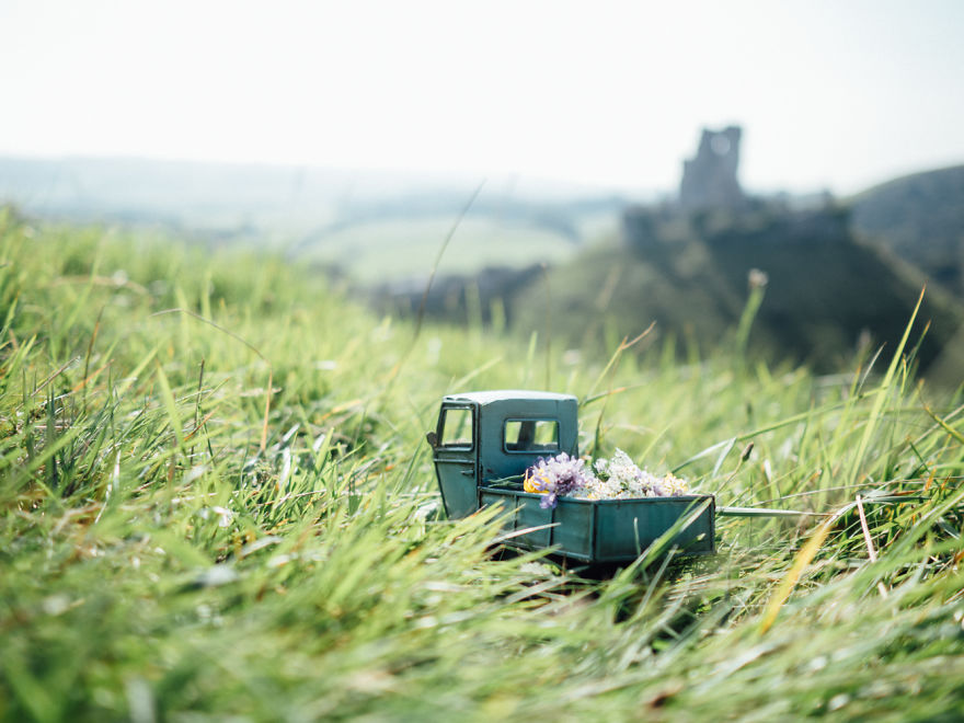 Flowers Delivery At Corfe Castle