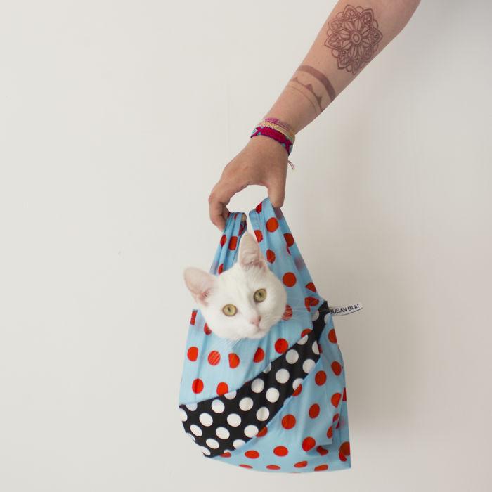 Cats In Fashion Bags