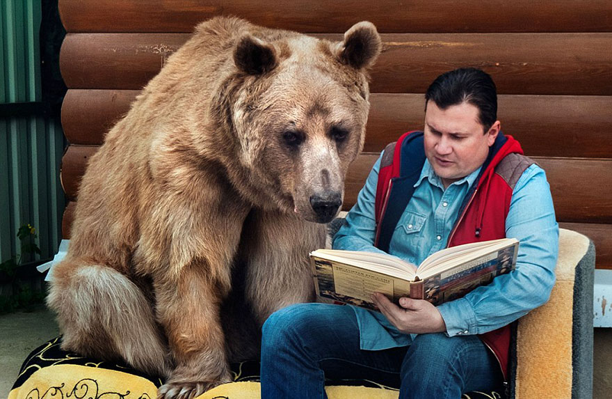 adopted-bear-russian-family-stepan-a2