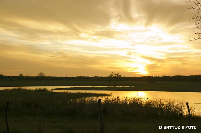 Wetlands Sunset