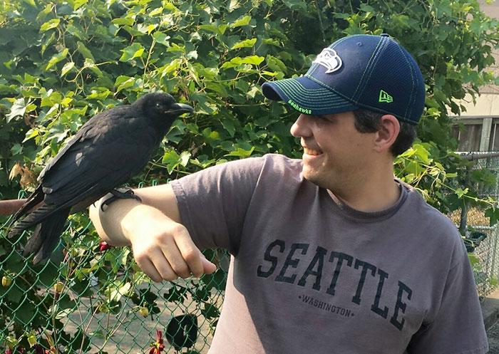 crow-befriends-man-canuck-12