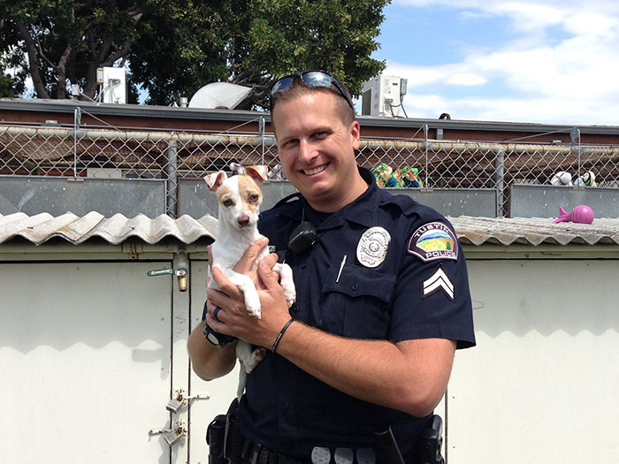 dog-addicted-drugs-policeman-bubba-4