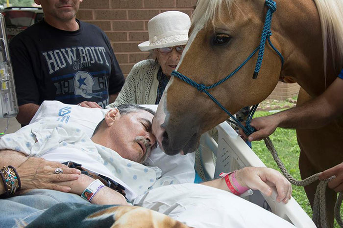 dying-veteran-horse-best-friend-roberto-gonzales-1