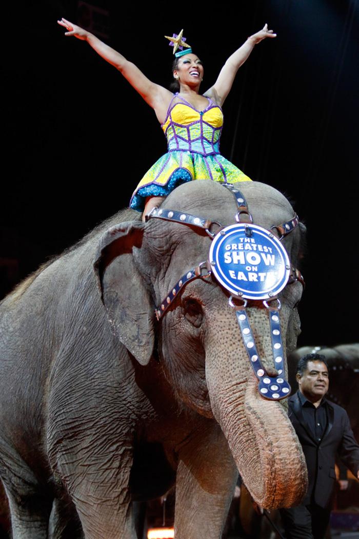 elephant-circus-ringling-bros-last-show-5