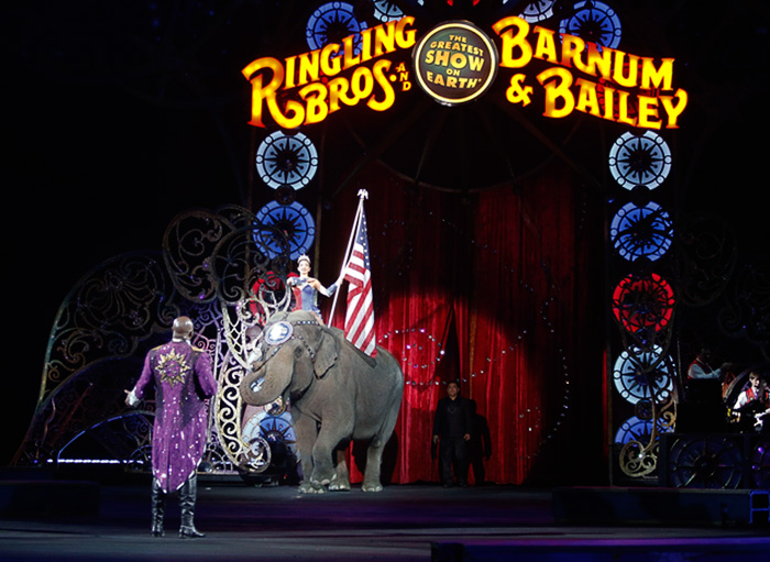 elephant-circus-ringling-bros-last-show-7