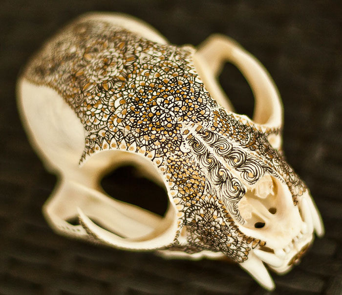 I Decorate Skulls With Golden Mandalas To Honour Fallen Creatures