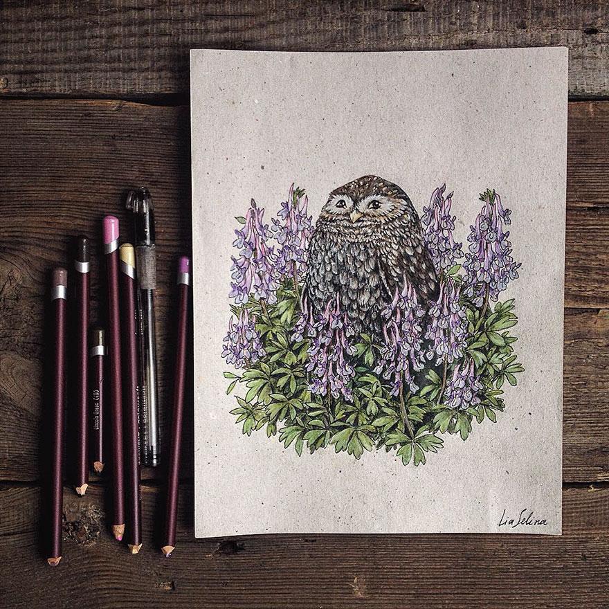 fairytale-illustrations-color-pencil-lia-selina-10