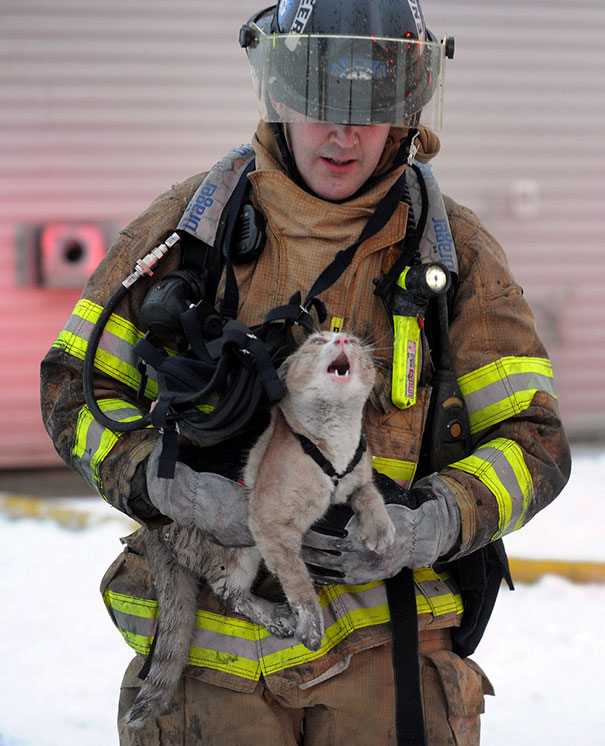 Firefighter Rescuing Pet