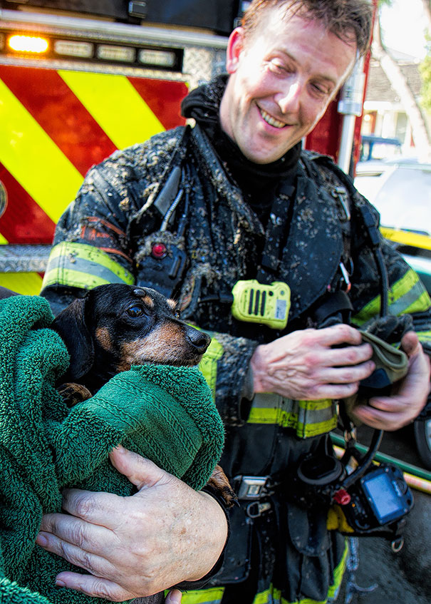 San Jose Firefighters Saved A Family Pet