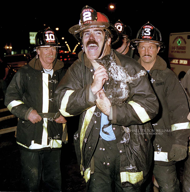 Besides This Kitten, Which Survived, Firefighters Also Rescued Several Dogs, A Bird In A Cage, And A 9 Foot Python. No Humans Were Harmed In This Fire
