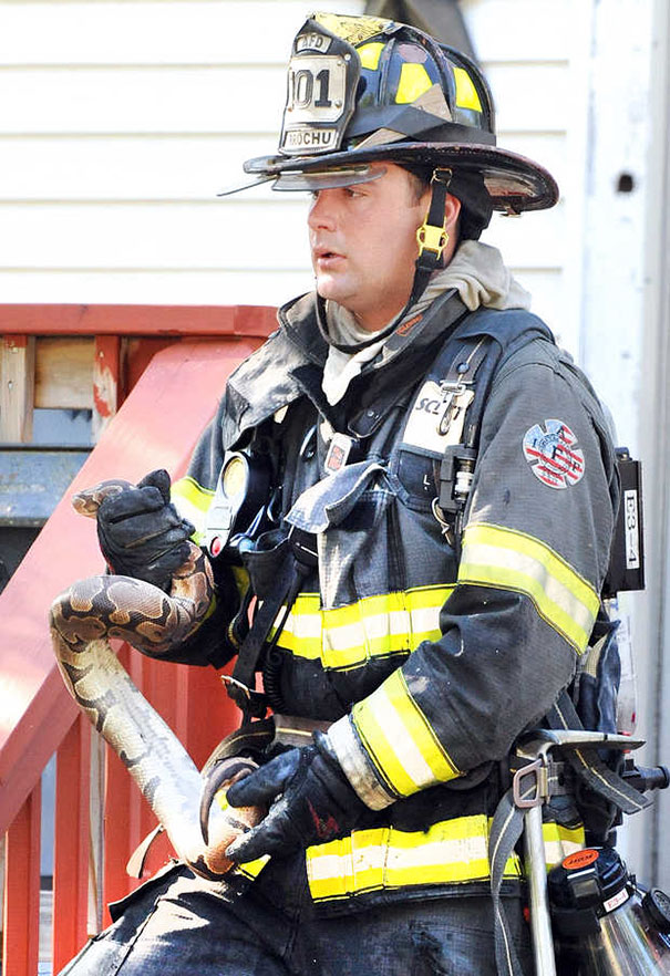 Auburn Firefighters Rescued Pet Snake From The Apartment Fire