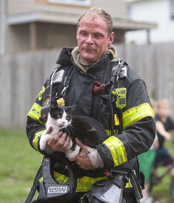 Firefighter Rescuing A Cat