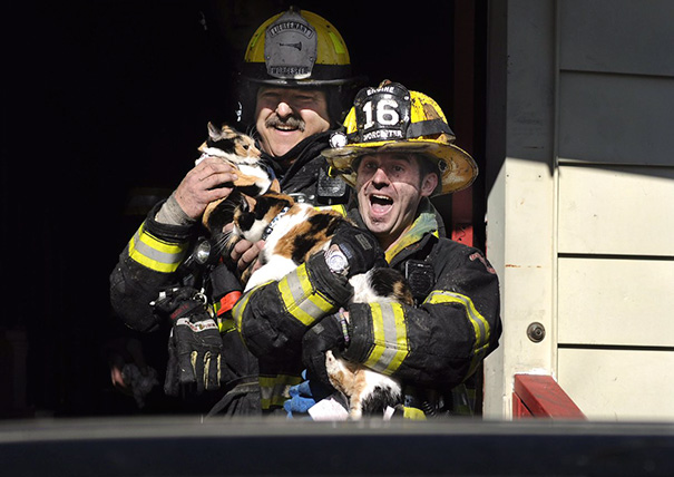 Worcester Firefighters Save Pets From Blaze