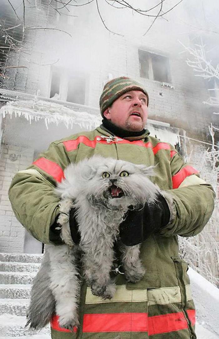 Russian Firefighter Saving A Cat