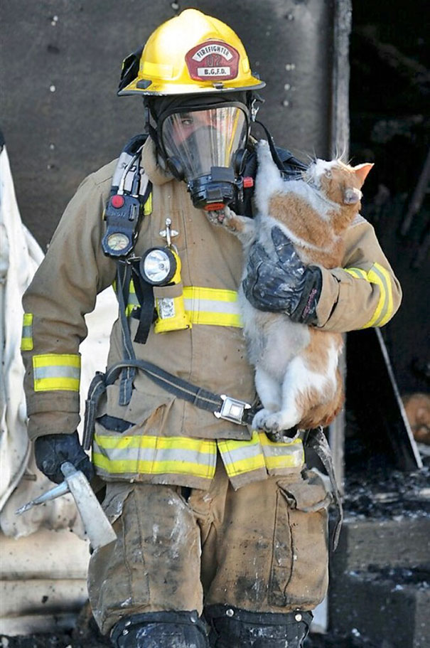 Bowling Green, Ky., Firefighter Jacob Lee Rescues A Cat From A Fire At An Apartment Complex