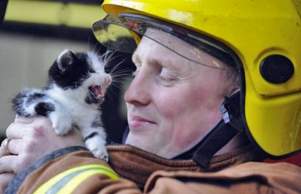 Firefighter Rescuing Small Kitty
