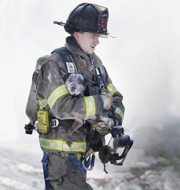 Firefighter Erik Vath Carries A Dog Away From A Fire