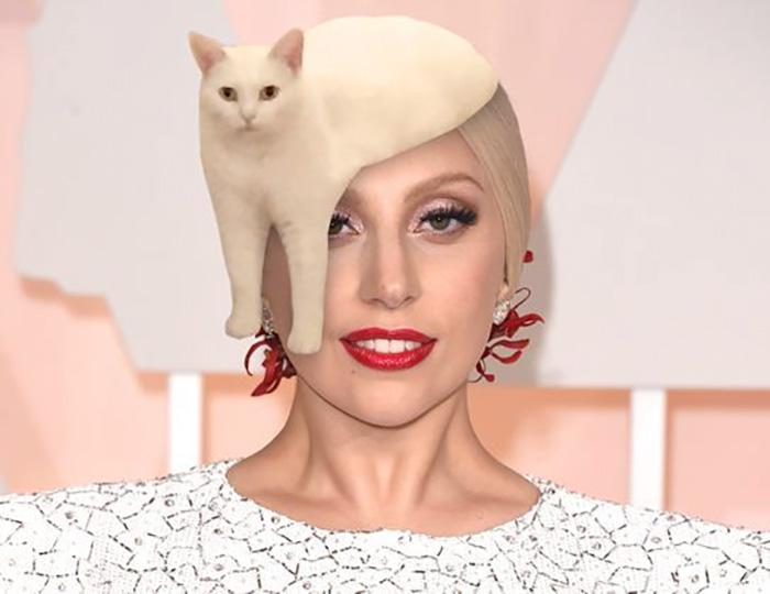 Gaga Cat Hat