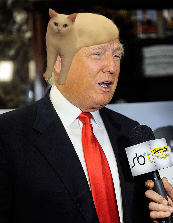The Secret Of Trumps Wig